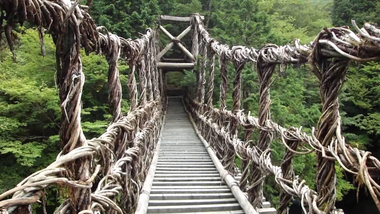 奥祖谷二重かずら橋の女橋を渡っ...