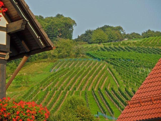 Sasbachwalden en la Selva Negra de Alemania. Pueblo bello de viñedos que hay que visitar y ver.