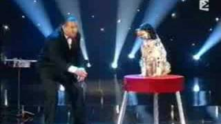 Vu au Plus Grand Cabaret Du Monde Franck Marvin Dog