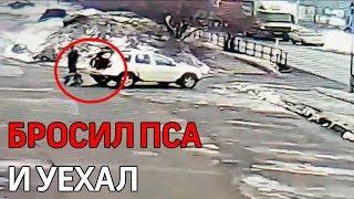 Москвич бросил свою собаку на парковке