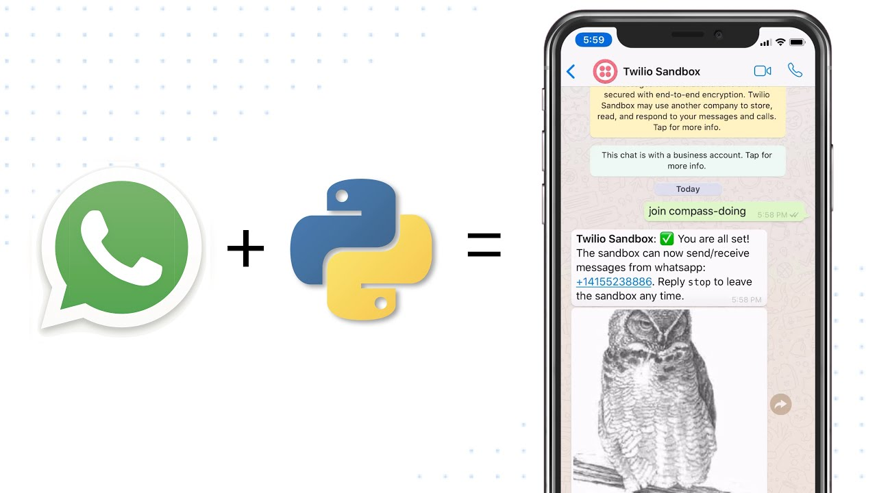 Send Images and Other Media via WhatsApp Using Python