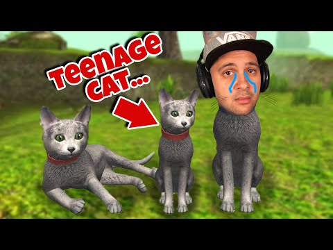 My Baby Kitten is a Teenager now...   Cat Simulator 2020