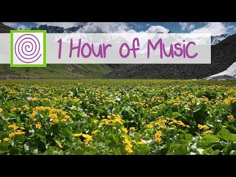 1 HOUR OF CONCENTRATION MUSIC. Get in the zone with peaceful concentration music!