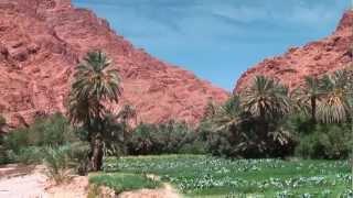 Marokko-Rundreise, Teil 8: Todra-Schlucht und Dades-Tal