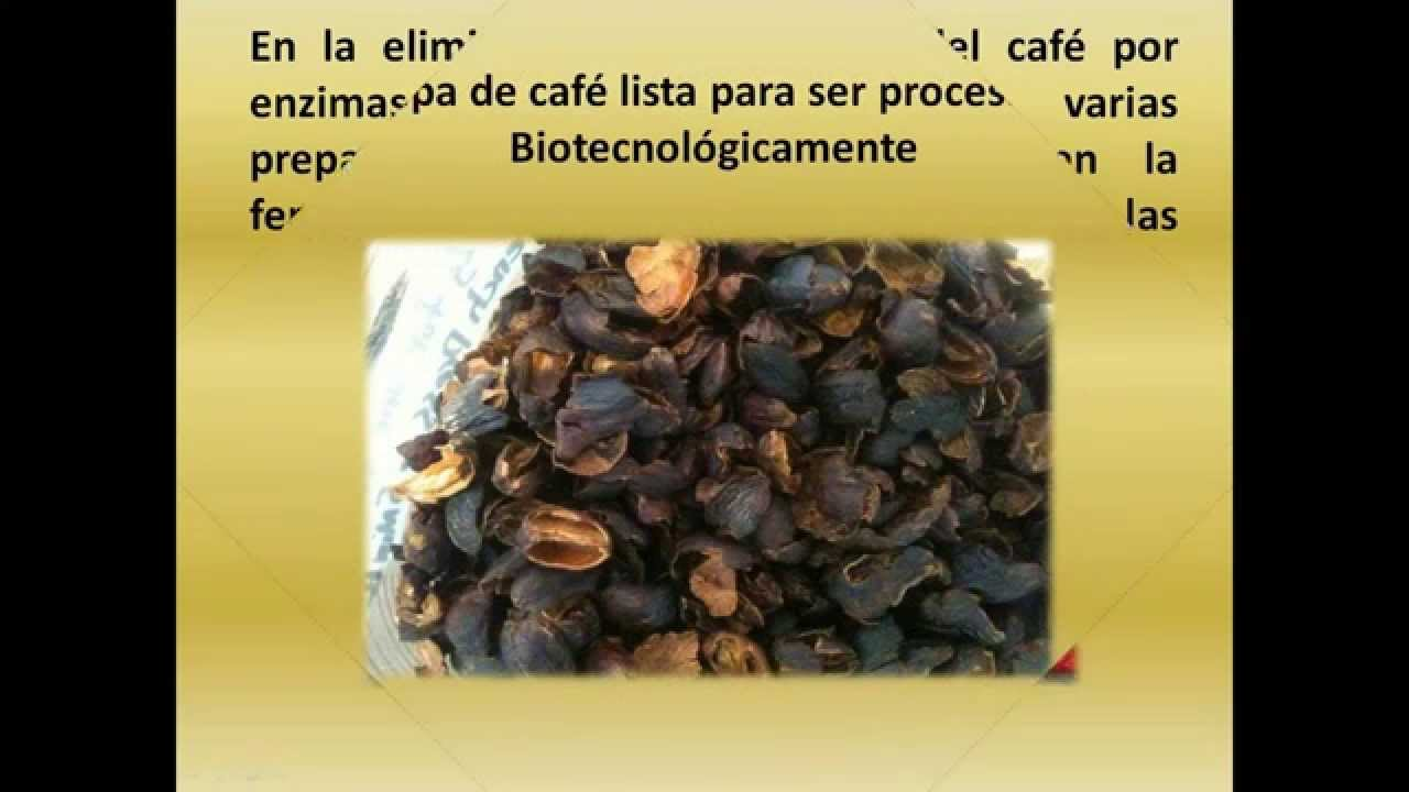 SUBPRODUCTOS DEL CAFE EBOOK