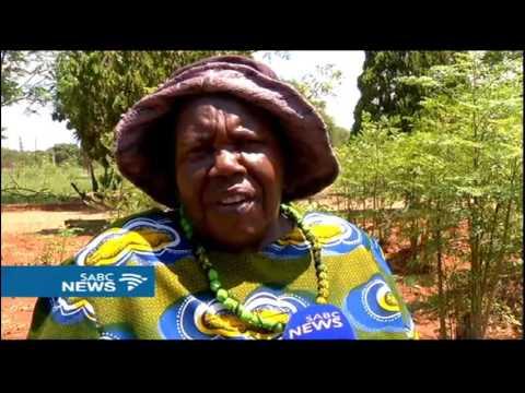 Pretoria woman, Mama Mary Lwate starts a moringa herbal tree farm