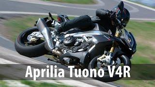 Aprilia Tuono V4R – итальянский гром. Городской мотоцикл разгоняется лучше спортбайка [Smotorom]