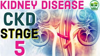 Chronic Kidney Disease Symptoms | CKD Stage 5 Symptoms | Ayurvedic Kidney Care In India