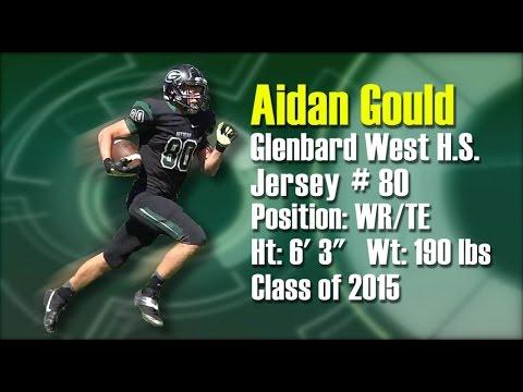 Aidan Gould WR/TE Glenbard West 2014 Mid-Season Football Highlights (HD)