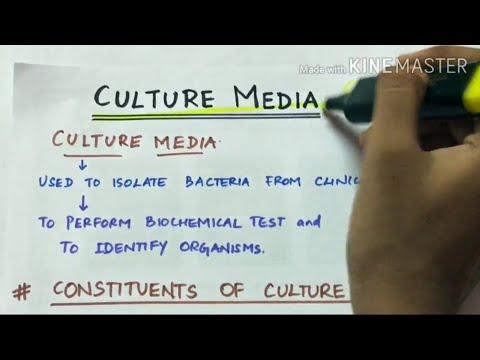 culture media | microbiology | handwritten notes