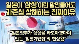 """일본이 삼성의 존재에 못참을정도로 자존심 상해하는 이유, """"일본정부가 '삼성' 'LG' 를 타도하겠다고 만든 '일장기 연합'의 현상황"""""""