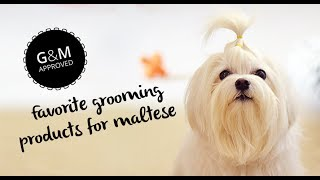 Favorite Grooming Tools For Maltese