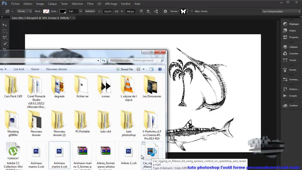 outil forme personnalise photoshop cs6