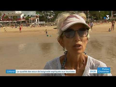 Pourquoi la mairie de Saint-Palais interdit-elle régulièrement les baignades sur ses plages ? - - France 3 Nouvelle-Aquitaine