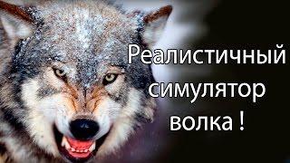 реалистичный симулятор волка ! ( Wolf quest )