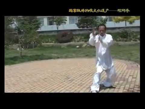 Mestre Li Fei Lin - Taiji Tang Lang Quan thumbnail