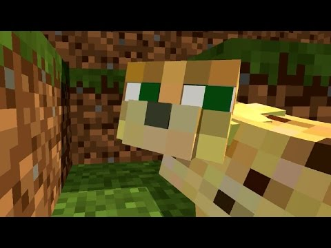 Ocelot Life - Wolf Life - Witch Life - Top Life Animations I -  Minecraft Animation