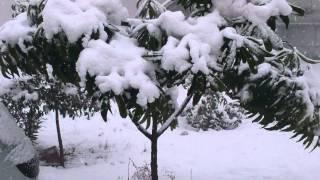 Gaziantep 20 Şubat 2015 Kar Yağışı...