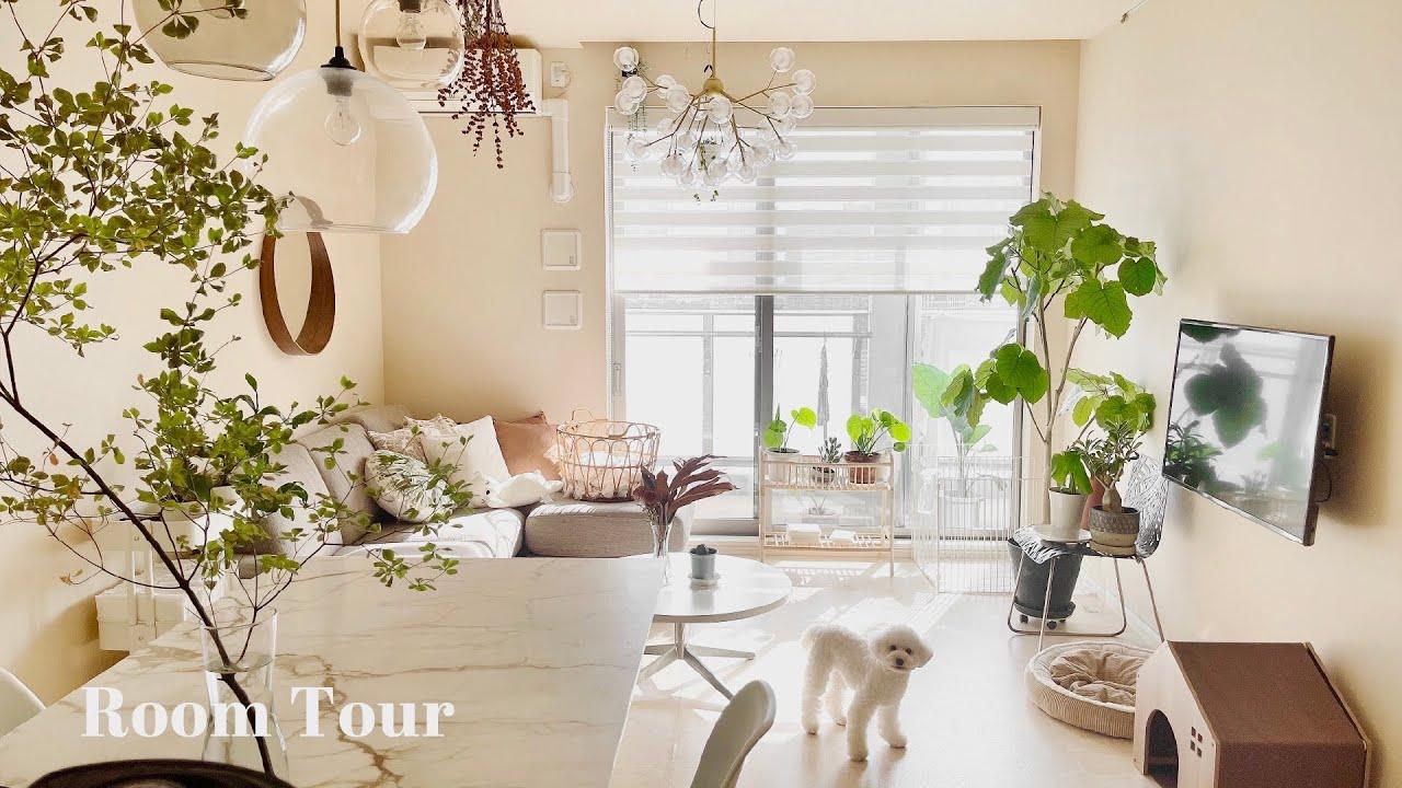 Download 【ルームツアー】IKEAと植物が好きなデザイナーさんのお部屋 真似したい収納術・無印良品・海外インテリア 愛犬と夫婦2人暮らし 観葉植物のある生活 room tour
