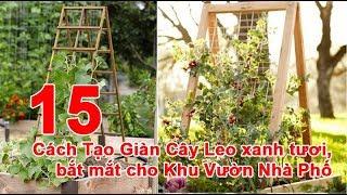15 Cách Tạo Giàn Cây Leo xanh tươi, bắt mắt cho Khu Vườn Nhà Phố