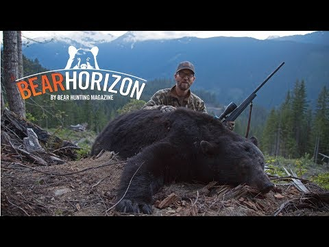 The Councilman   British Columbia Black Bear Hunt   BEAR HORIZON Episode 2