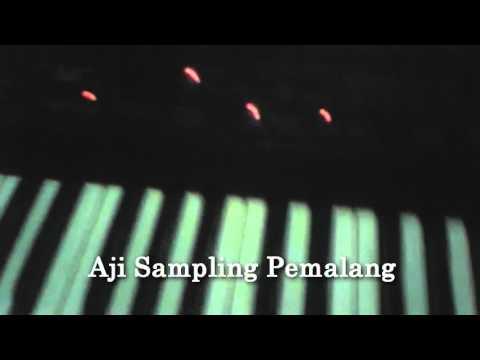 dangdut koplo sampling Roland E96