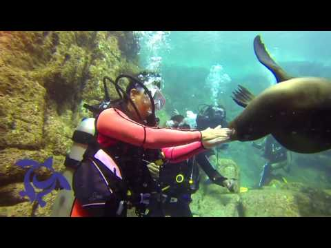 La Paz, Mexico with Underworld Scuba & Sport