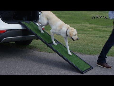 orvis---natural-step-portable-dog-car-ramp