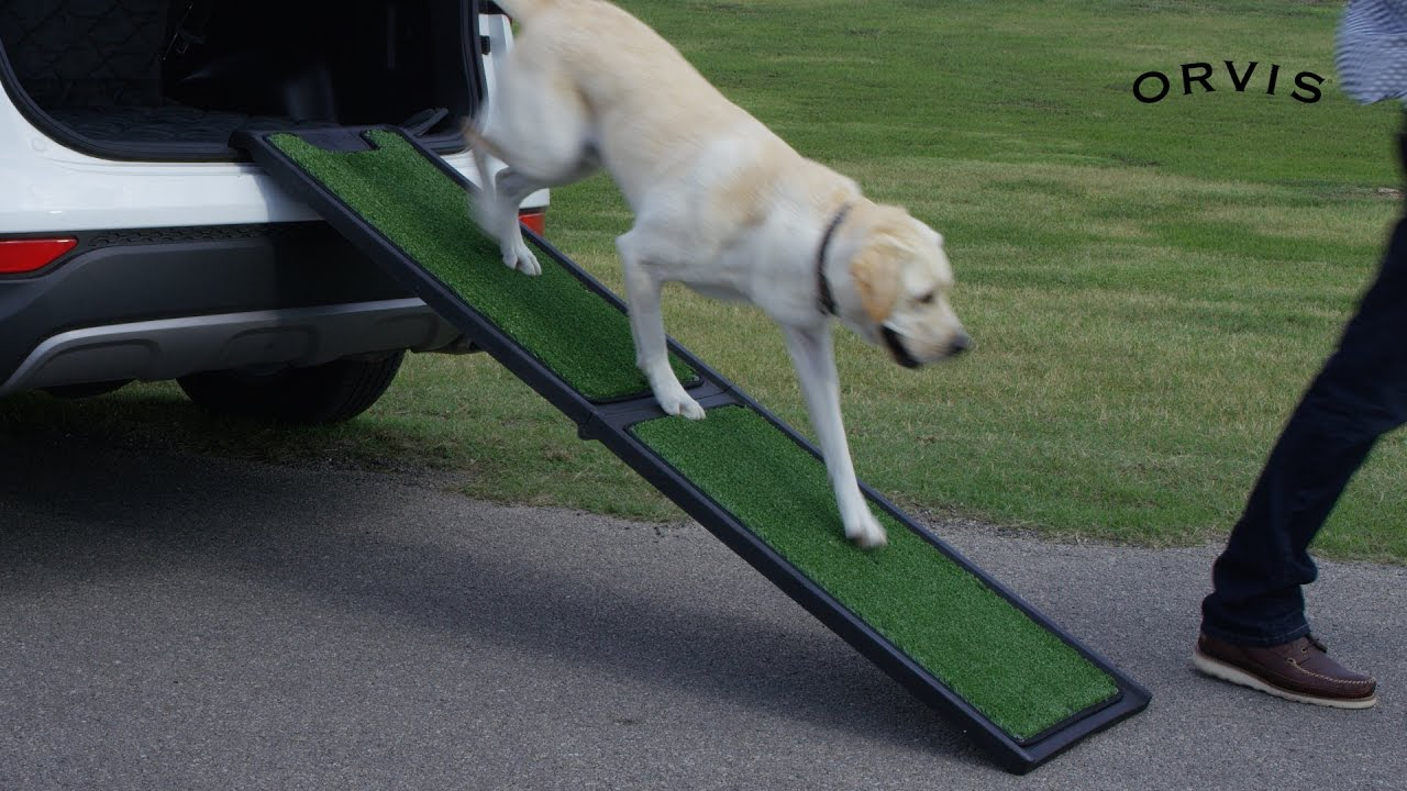 Pet Ramp For Car >> ORVIS - Natural Step Portable Dog Car Ramp - YouTube