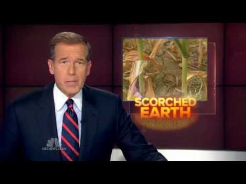 MSNBC - Nightly News - Corn Prices Hit Record Levels As Drought Continues 7-16-2012