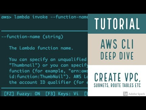 AWS CLI Deep Dive: Create a VPC, Subnets, Route Table, Instance with CLI