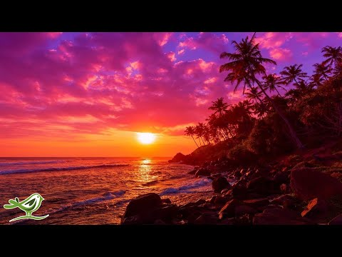 Relaxing Harp Music: Stress Relief, Soothing Music, Peaceful Music, Calming Music, Nature Sounds ★81