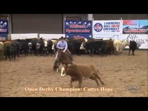 Michael Cooper and Cattys Hope Open Derby Champions 2017 Abliene Spectacular