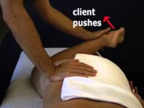 Deep Tissue and Neuromuscular Therapy The Torso DVD by Real Bodywork