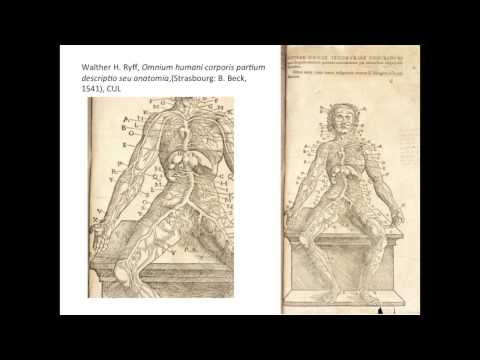 The Body in the Book: The Fabrica and the Epitome (1543)