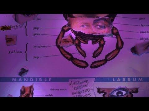 Bad Mojo Redux: A Grotesque Kafkaesque (Part 4/5)  