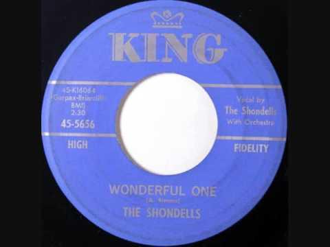 The Shondells  -   Wonderful One