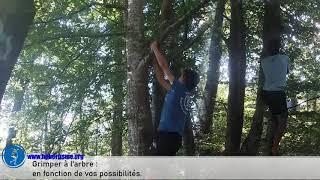La leçon en pleine nature, séance n°16, Méthode Naturelle / Hébertisme