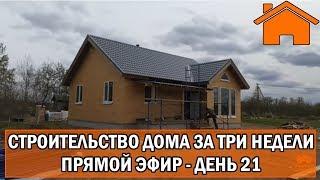 Строительство дома за 3 недели, прямой эфир. День 21-ый.