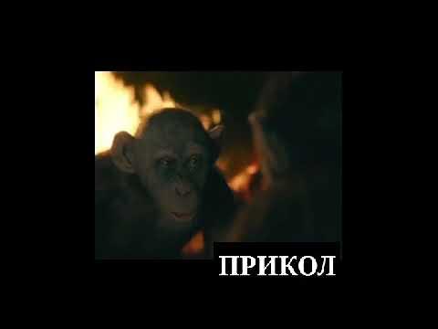 ЛаКаЙ ПрИкОл 2019