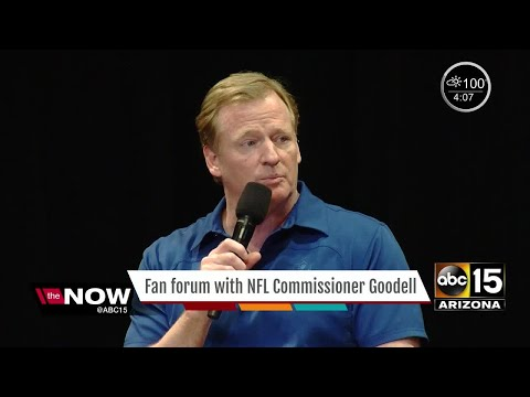 NFL Commissioner Roger Goodell talks to Arizona fans