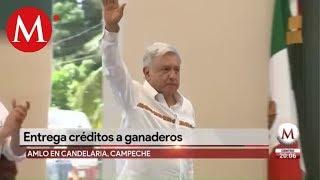 Habitantes de Campeche obsequian gansos a AMLO