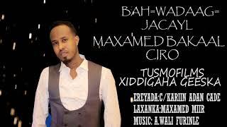 Maxamed Bakaal Ciro|  Bah-Wadaag-JACAYL  | - New Somali Music Video 2018 (Official Video)