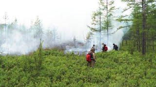 В Селемджинском районе огонь не утихает уже две недели