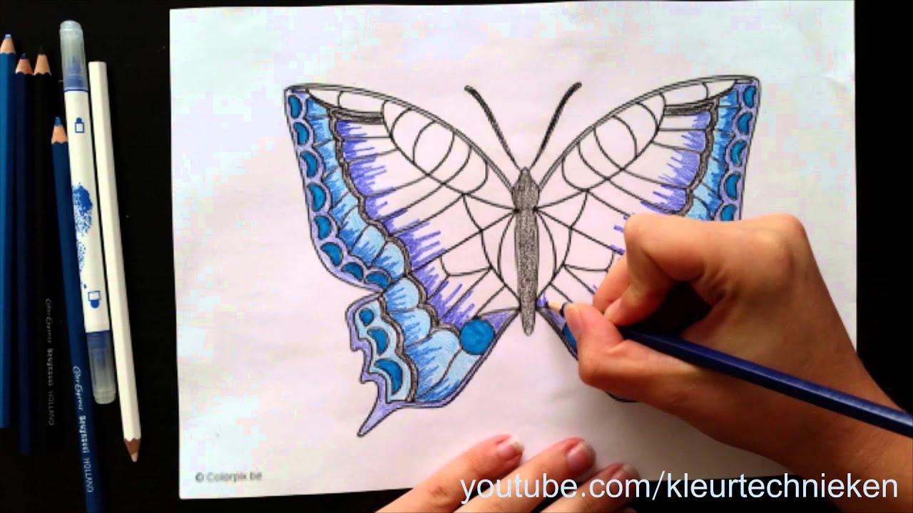 Vlinder Kleuren Youtube