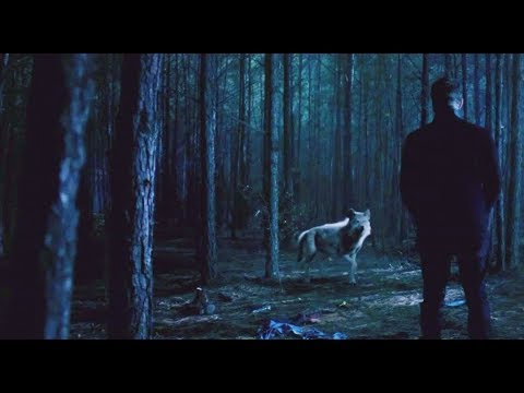 """Download The Originals 5×12 """"I am so proud of you"""" Hope transitions into a werewolf