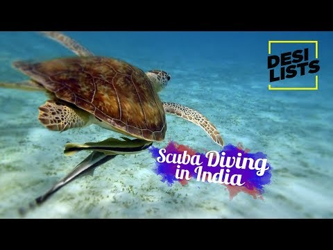 Scuba Diving in India - Top 5 Destinations