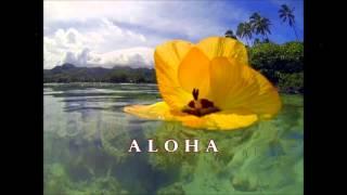 Lei Pikake by Rod Danny's with Hawaiian lyrics