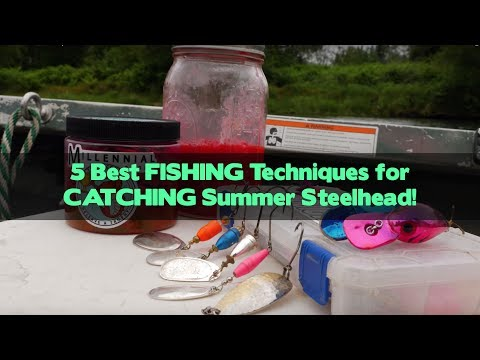 5 Best FISHING Techniques For CATCHING Summer Steelhead!