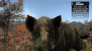 Big Game Hunter 2014 - Охота на кабана с ружьем #5